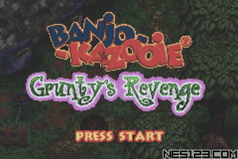 Banjo-Kazooie - Grunty's Revenge