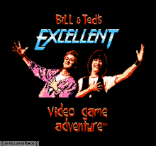Bill & Teds Excellent Video Game Adventure