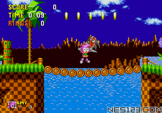 Amy Rose in Sonic the Hedgehog