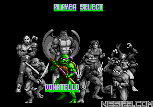 Turtles - Tournament Fighters