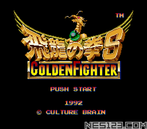 Hiryuu no Ken S - Golden Fighter