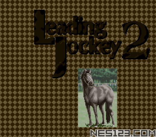 Leading Jockey 2