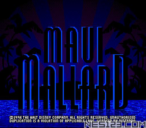 Maui Mallard in Cold Shadow