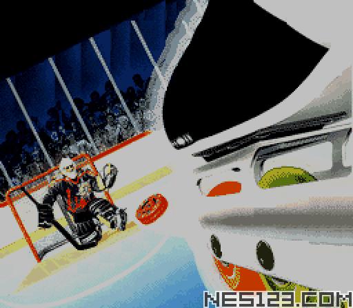RHI Roller Hockey '95